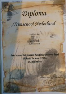 diploma Trimsalon de Betuwe